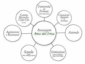 Network progetto Ortica